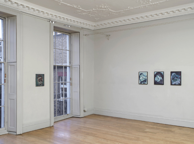 Christopher Hanlon: Chamber, installation view, photography by Andy Keate 2014