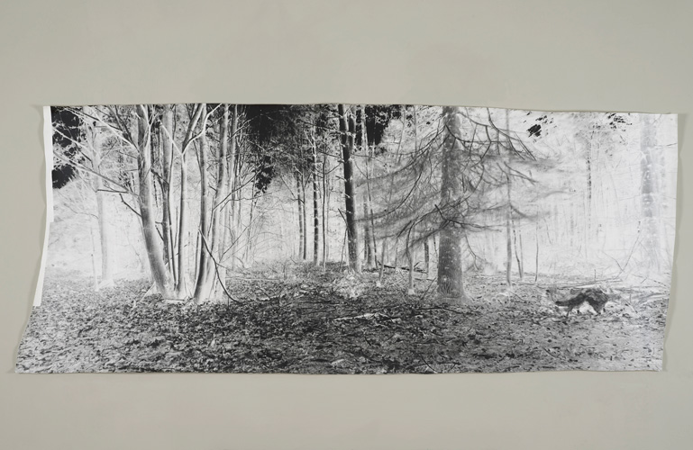David Gates 'Standard Image 2' unique photograph 89×212cm/35×83.5in (approx) 2014 (photograph by Andy Keate)